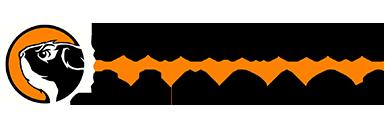SLS_logo_blog.png